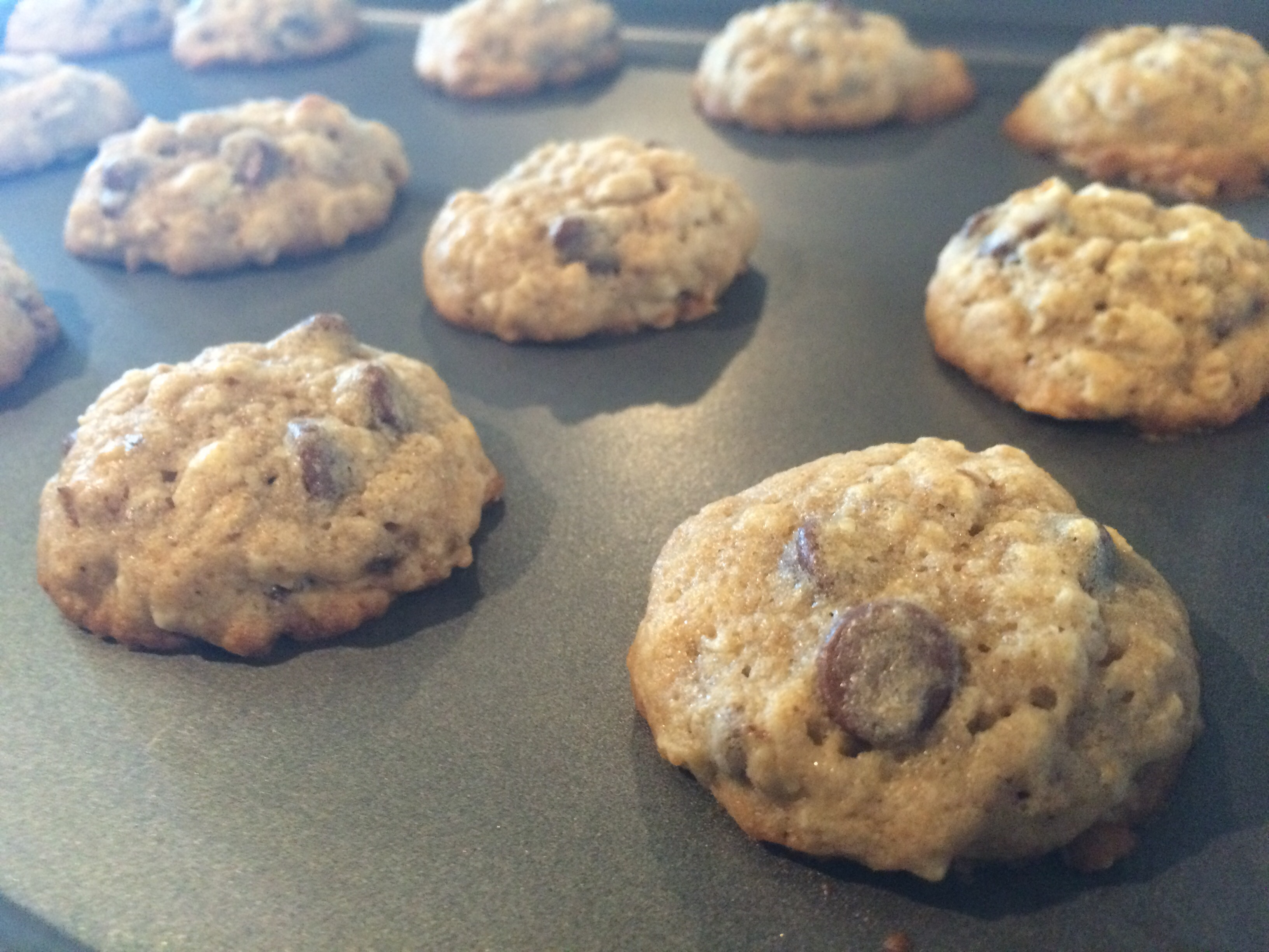 Banana Walnut Chocolate Chip Cookies | fireislandchef